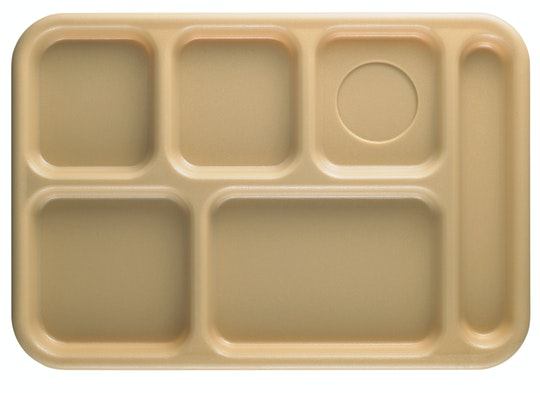 Correctional Trays