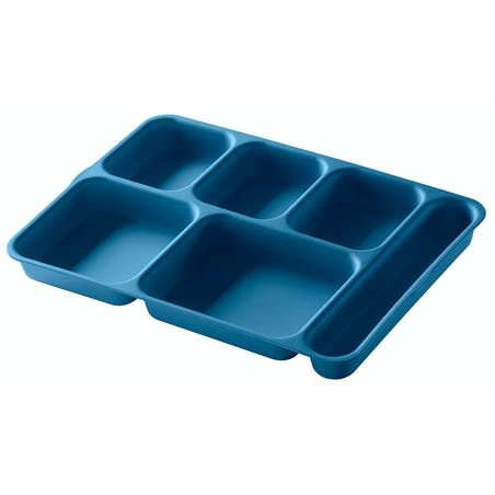 Separator Compartment Trays